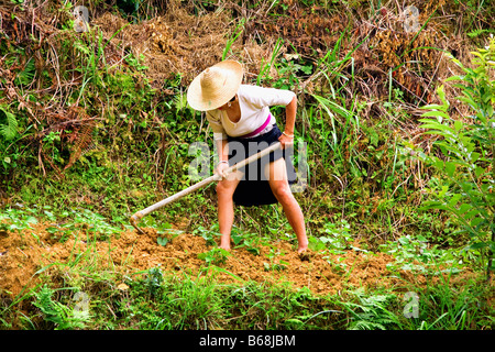 Mature woman digging a field, Jinkeng Terraced Field, Guangxi Province, China - Stock Photo