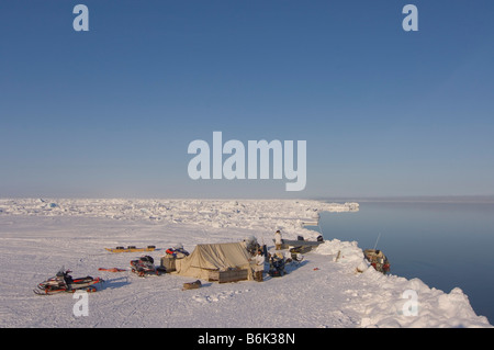 ringed seal Phoca hispida adult rests outside its breathing hole on multi layer ice Chukchi Sea off the Arctic coastal - Stock Photo
