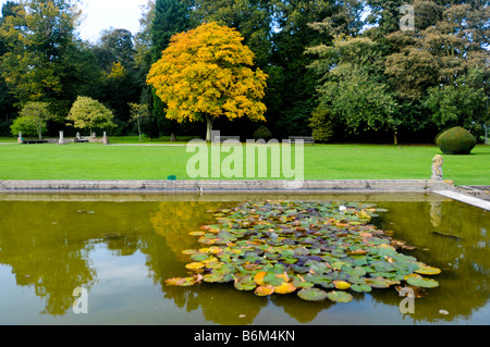 Part of the gardens at Burton Agnes Hall, Driffield, East Yorkshire, UK in autumn - Stock Photo
