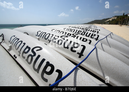 A ROW OF WHITE CANOES LINED UP ON A BEACH QUEENSLAND AUSTRALIA HORIZONTAL BDB11366 - Stock Photo