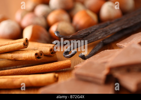 Hazelnuts Cinnamon Sticks Vanilla Beans and Chocolate - Stock Photo