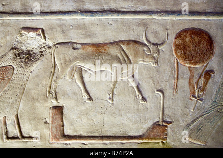 Relief work from the Temple of Seti I at Abydos, Nile Valley Egypt - Stock Photo