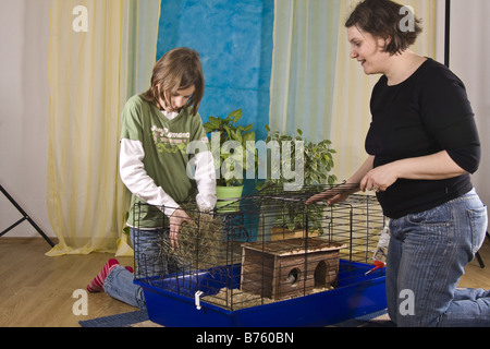 mother and his daughter preparing a cage for Guinea pigs or rabbits - Stock Photo
