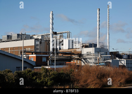birds eye food factory lowestoft suffolk england stock photo royalty free image 21765801 alamy. Black Bedroom Furniture Sets. Home Design Ideas