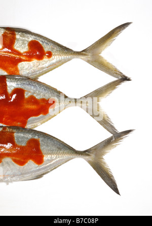 Three whole fish tails with red hot spicy sauce - Stock Photo