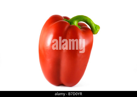Red pepper isolated on white - Stockfoto