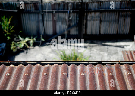 Rusted corrugated iron roof overlooking backyard and corrugated iron fence. Susannah Place Museum, The Rocks, Sydney, - Stockfoto