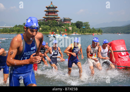 A general View of Swim Finish to Transition Area AUGUST 19 2008 Triathlon during the Mens Triathlon Final at the - Stock Photo