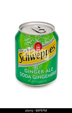 Schweppes Ginger Ale - Stock Photo