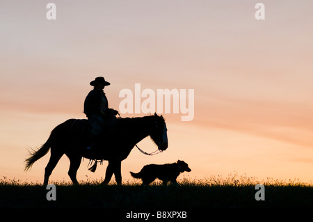 Cowboys on horses with dog at sunset silhouettes - Stock Photo