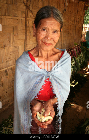 Karbi Tribe Woman Holding Eri Silkworms, Assam, India - Stock Photo