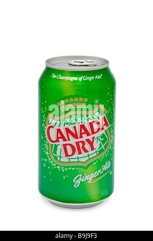 Can of Canada Dry Ginger Ale - Stock Photo