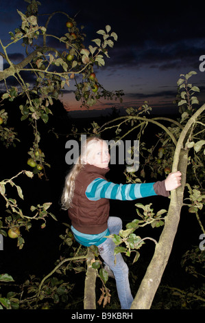 Young girl in tree - Stock Photo