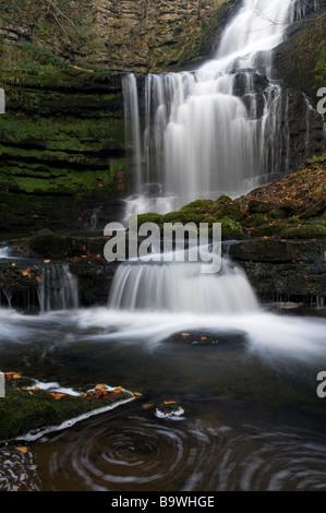 Waterfall Tea Rooms Summit
