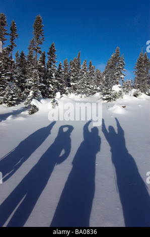 The shadows of four people on the snow - Stock Photo
