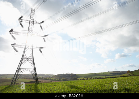 Electricity Pylons In A Paddock - Stock Photo