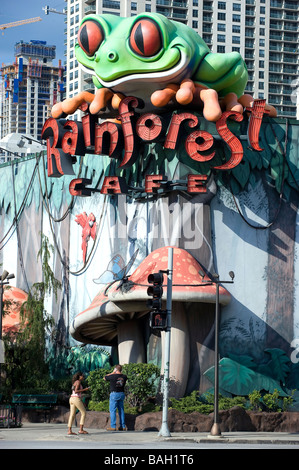 Rainforest Cafe Illinois