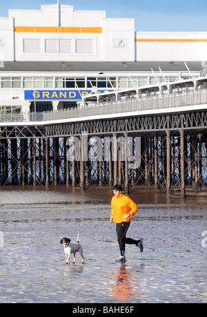 A MAN JOGGING AND EXERCISING HIS DOGS AT THE SAME TIME ON THE BEACH AT WESTON SUPER MARE SOMERSET UK - Stock Photo