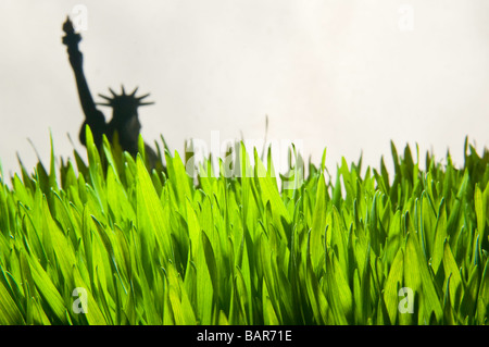 Wheat grass close-up with Statue of Liberty model. - Stock Photo