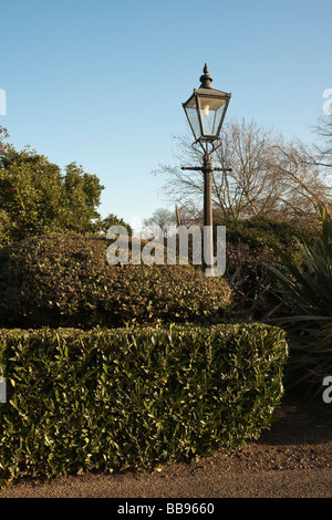 One old lamp post in park against clear sky at sunset - Stock Photo