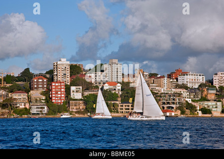 Australia New South Wales. Sailing in the late afternoon off Double Bay in Sydney harbour. - Stock Photo
