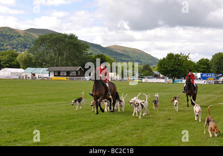 Midland Counties Dog Show