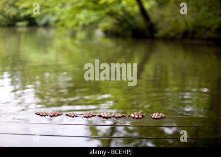Hands hanging off the side of a dock - Stock Photo