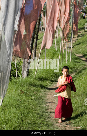 India, Sikkim, Pelling, Sangachoeling Gompa, the second oldest Gompa in Sikkim, Novice monk walking along path by - Stockfoto