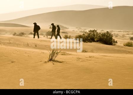 Trekking in the Namib Desert - Stockfoto