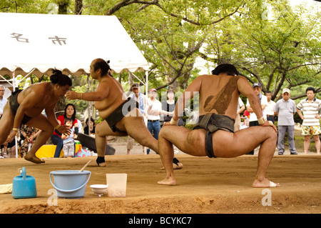 Sumo wrestlers of the Minezaki Heya during their early morning training, Kyuka Koen (Nine Flowers Park), Kuwana, - Stockfoto