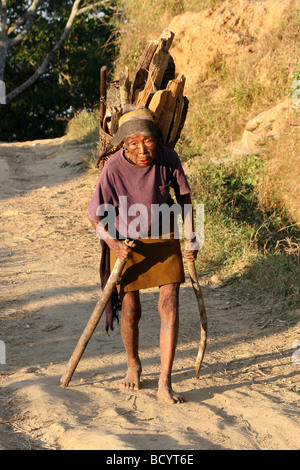 Elderly Konyak Naga Tribe Woman Carrying Firewood - Stock Photo