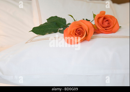 two roses on a bed - Stock Photo
