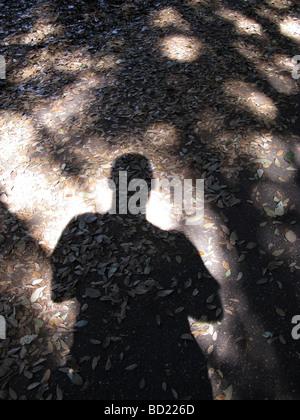 Mannes Schatten auf Wanderweg im Wald - Stockfoto
