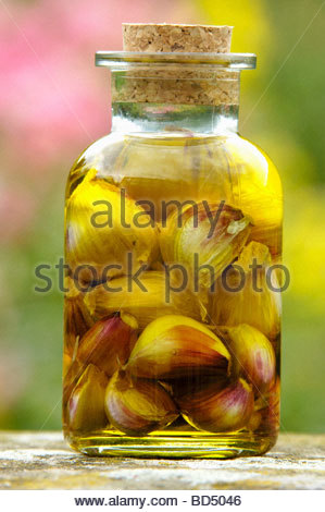 Garlic pickled in olive oil - Stock Photo