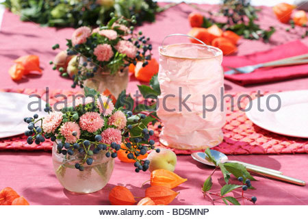 Table decoration of asters, Boston ivy & Chinese lanterns - Stock Photo