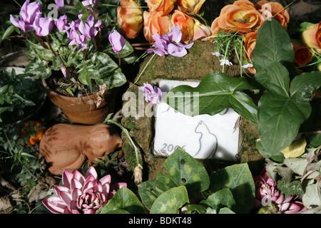 cat gravestone in protestant cemetery near piramide, rome - Stock Photo