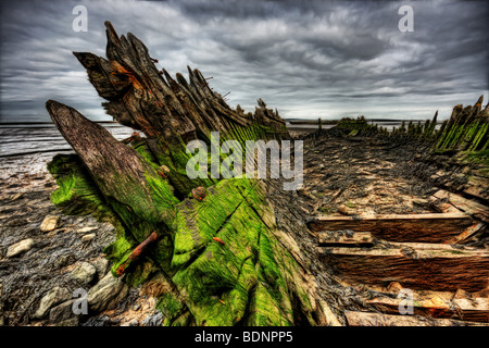 Green algea build up and rotting wood and nails on an old abandoned boat wreck beached in mud on the river swale - Stock Photo