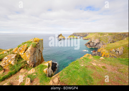 View over Kynance Cove at Lizard Point, Cornwall, England, UK, Europe - Stock Photo