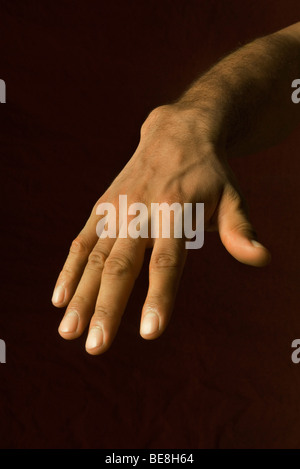 Man's hand showing manicured nails - Stockfoto