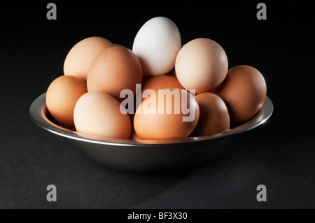 Close-up of a white egg on top of brown eggs - Stock Photo
