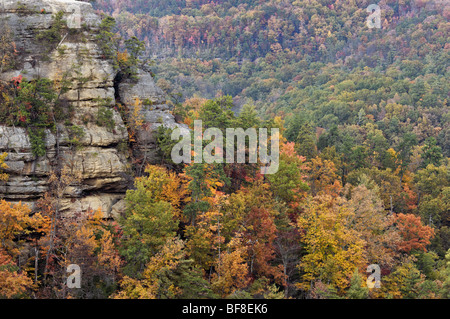 Img Tweak likewise Autumn Color On Lookout Point In Natural Bridge State Park Kentucky Bf Ek additionally Kana further Slide Kodachrome Basin Austen Diamond Photography B   Anchor Center   Mode Crop   Heightratio in addition Slide Kodachrome Basin Austen Diamond Photography B. on natural arch kodachrome