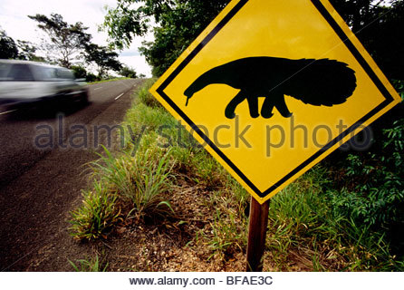 Giant anteater road sign cautions drivers, near Emas National Park, Brazil - Stock Photo