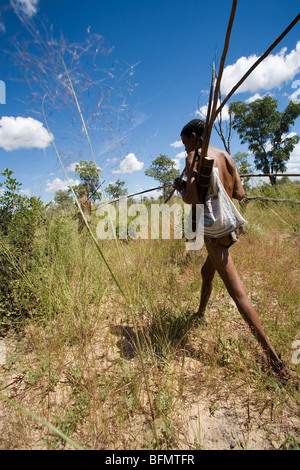 Namibia, Bushmanland. Armed with bow, arrows and digging sticks, a Bushman strides through the bushveld in search - Stock Photo