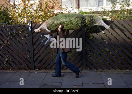 a man who has bought a christmas tree at columbia road flower market in london - Stock Photo