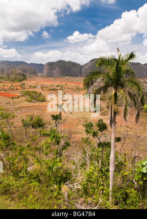 Vinales Valley, Province of Pinar del Rio, Cuba, Caribbean - Stock Photo