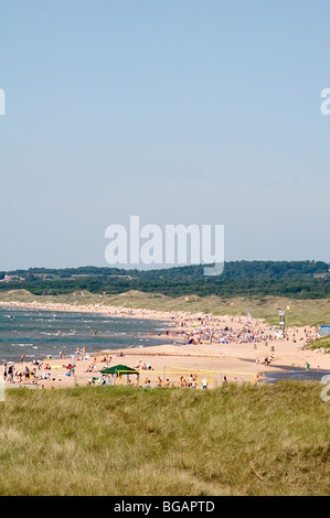 Swedish Beach Beaches Sweden Summer Time Summertime Forest