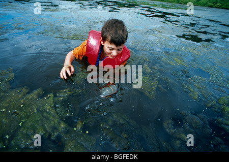 8 year-old boy catching a Eastern Painted Turtle (Chrysemys picta picta) in the Watershed Pond. Pennington, New - Stock Photo