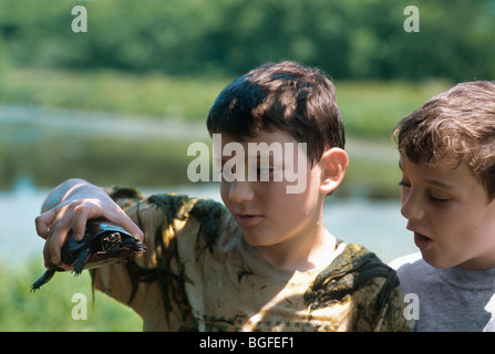 8 year-old children examine Eastern Painted Turtle (Chrysemys picta picta) at Watershed Pond. Pennington, New Jersey - Stock Photo