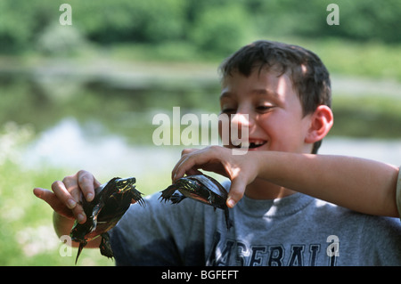 8 year-old children examine Eastern Painted Turtles (Chrysemys picta picta) at Watershed Pond. Pennington, New Jersey - Stock Photo