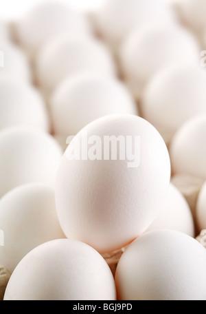 large white egg whites of eggs. - Stock Photo